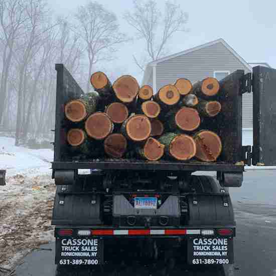 Dumpster truck loaded with logs
