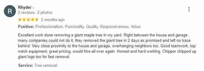 Google review by Rhyder