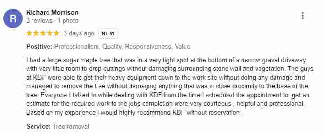 Google review by Richard