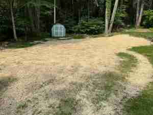 New lawn after stump removal