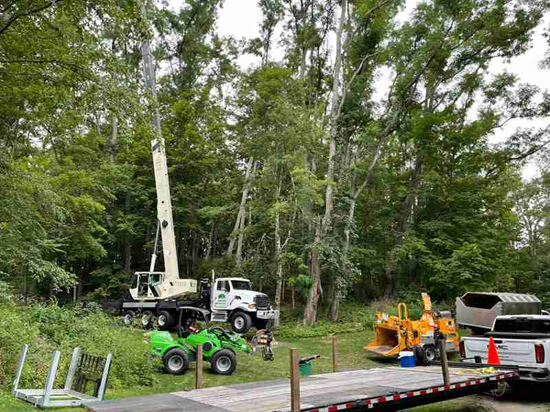 KDF Tree removal equipment setting up to remove locust trees