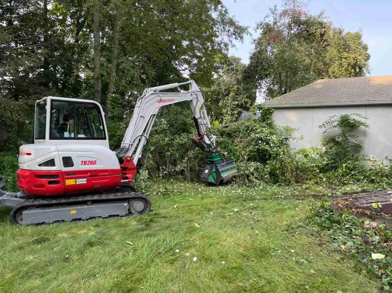 Brush mowing overgrown area near garage.